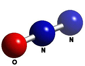 oxid de azot și varicoză