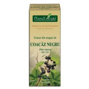 EXTRACT DIN MUGURI DE COACAZ NEGRU 50ML